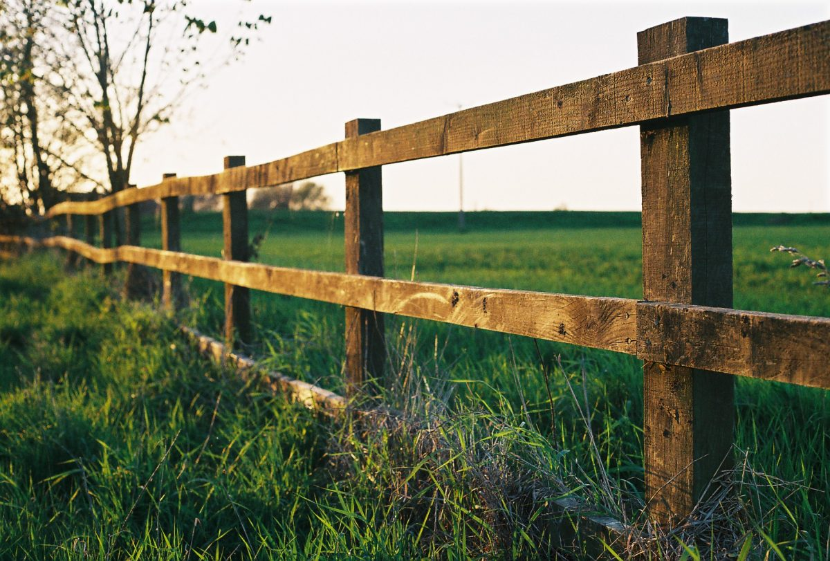 How to choose the best fence for your yard in Fort Collins